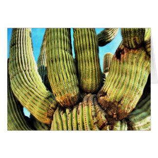 Arizona-Kaktus Karte