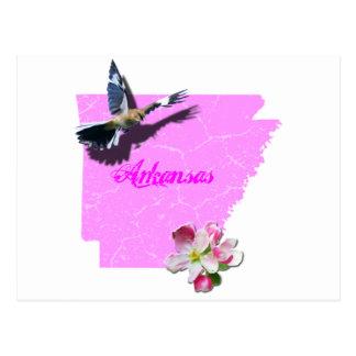 Arkansas-Spottdrossel u. Apple blühen Postkarte