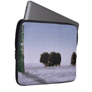 Arktische Moschus-Ochsen-heilige Tier-Tier-Kunst Laptopschutzhülle