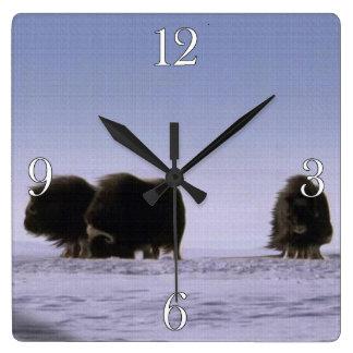 Arktische Moschus-Ochsen-heilige Tier-Tier-Kunst Quadratische Wanduhr