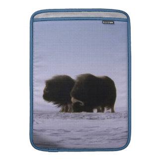 Arktische Moschus-Ochsen-heilige Tier-Tier-Kunst Sleeve Fürs MacBook Air