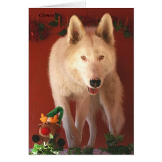 Arktische Wolf-Weihnachtskarte Grußkarte