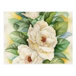 Art d'aquarelle de fleur de magnolia - multi cartes postales