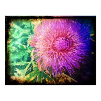 Artischocken-Blüte Postkarte