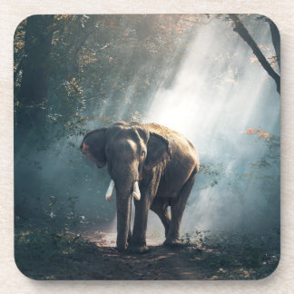 Asiatischer Elefant in einer Sunlit Waldreinigung Getränkeuntersetzer