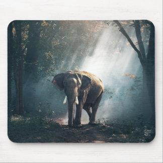 Asiatischer Elefant in einer Sunlit Waldreinigung Mauspad