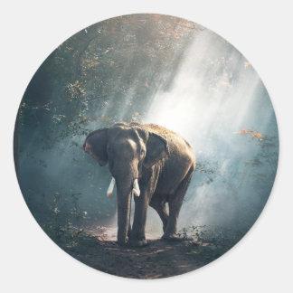 Asiatischer Elefant in einer Sunlit Waldreinigung Runder Aufkleber