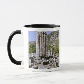 Asien, Mittlere Osten, die Türkei, Ephesus. Tempel Tasse