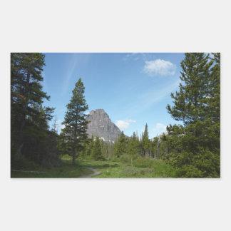 Aster-Park-Spur am Glacier Nationalpark Rechteckiger Aufkleber