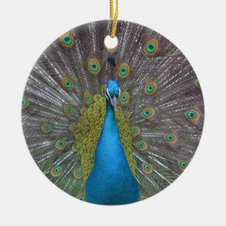 Atemberaubender Pfau Rundes Keramik Ornament