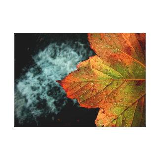 Atemberaubendes Herbst-Blatt u. Wasserfall-klarer Leinwanddruck