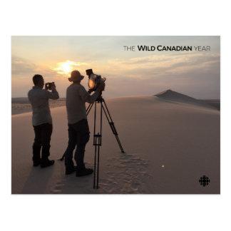 Athabasca Sanddünen Postkarte