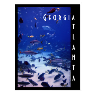 Atlanta-Aquarium, Georgia Postkarte