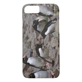 Atlantik, Falklandinseln. Rockhopper 2 iPhone 8/7 Hülle