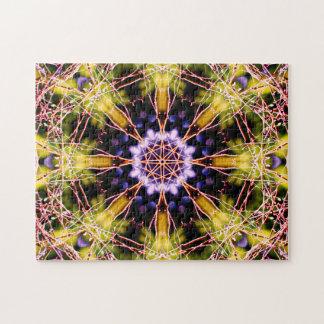 Atomwissenschafts-Mandala