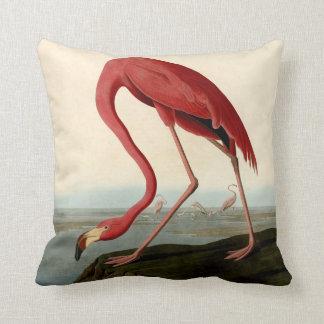 Audubon Amerikaner-Flamingo Kissen