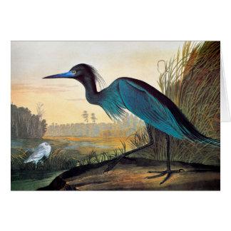 Audubon: Kleines Blau-Reiher Karte