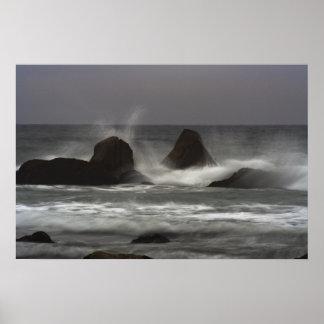 Auf den Felsen - weißer Punkt-Strand, NS Poster