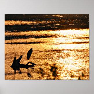Auf goldenem See Poster