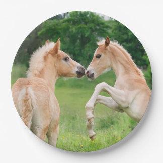 Aufrichtende Haflinger Pferdeniedliche Fohlen, Pappteller