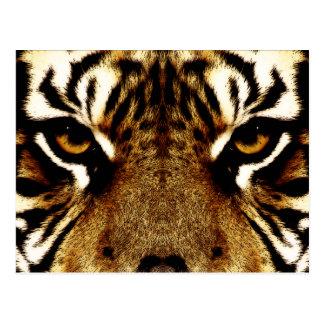 Augen eines Tigers Postkarte