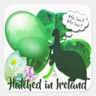 Ausgebrütet in Irland Quadratischer Aufkleber