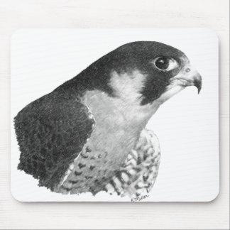 Ausländischer Falke-Bleistift Mauspads