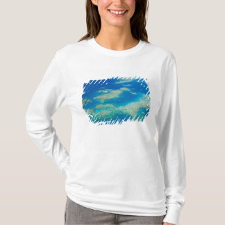 Australien, Queensland, Nordküste, Steinhaufen 3 T-Shirt