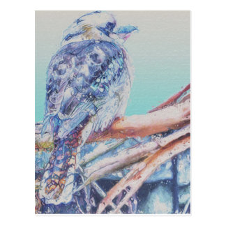 Australier Kookaburra Postkarte