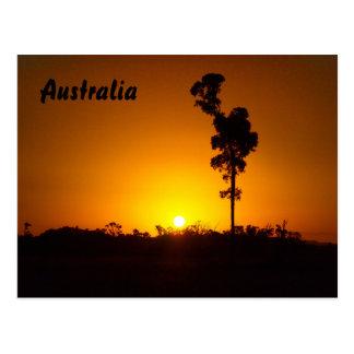 Australische Hinterlandsonnenuntergangpostkarte Postkarte