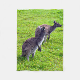 Australische Kängurus auf Gras-kleiner Fleecedecke