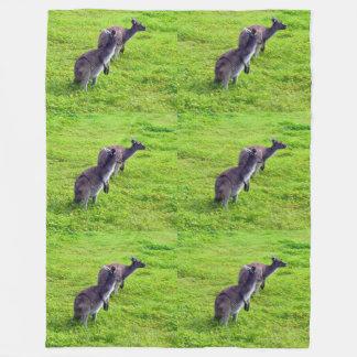 Australische Kängurus auf Gras Lge Fleece-Decke Fleecedecke