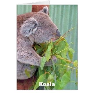 Australische Tier-Karte Karte