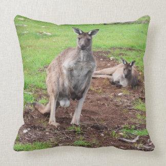 Australischer männlicher Dollar-Känguru-großes Kissen