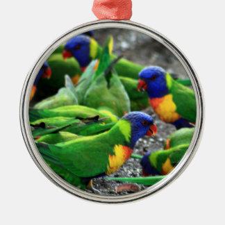 Australischer Regenbogen Lorikeets Rundes Silberfarbenes Ornament
