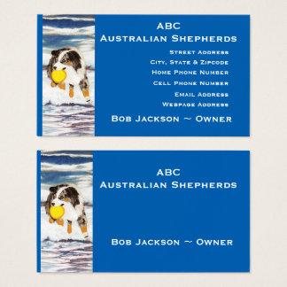 """Australischer Schäfer """"blauer Merle Frisbee-Hund """" Visitenkarte"""