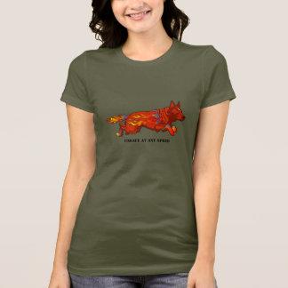Australischer Vieh-Hund - unsicher an irgendeinem T-Shirt