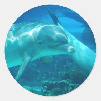 Autocollants espiègles de dauphins
