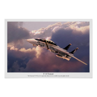 "Aviation Art Poster ""F-14 Tomcat"""