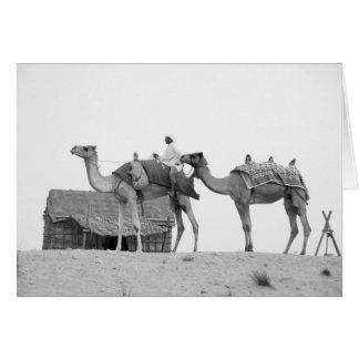 B&W Dubai Wüste Karte