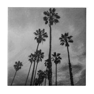 B&W Los Angeles Palmen Keramikfliese