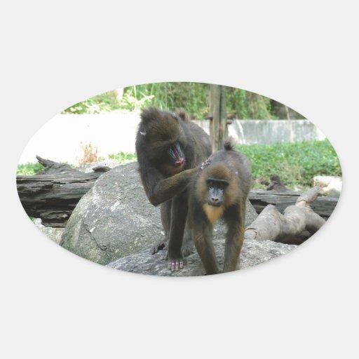 Babouins espiègles, mignons, futés et amicaux sticker ovale