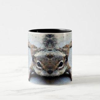 Baby Joey Grundeichhörnchen-Kaffeetasse/Tasse Zweifarbige Tasse