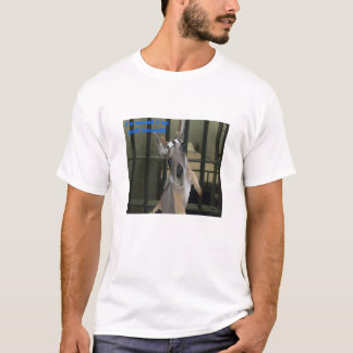Baby-Känguru proklamiert seine Unschuld T-Shirt