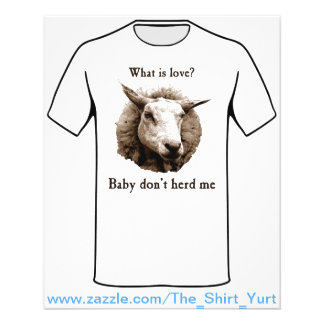 Baby leben mich nicht Schafe in Herden 11,4 X 14,2 Cm Flyer