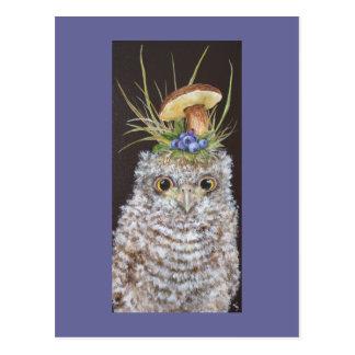 Babyeule mit Blaubeeren und Pilzhut Postkarte