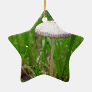 Babypilz Keramik Ornament