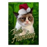 Bah Humbug-mürrische Katze Karten