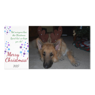 Bah Humbug-Weihnachtskarten-Schäferhund lustig Karte