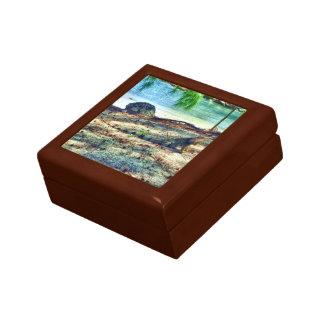 bahama Leguan-Geschenkboxen Erinnerungskiste